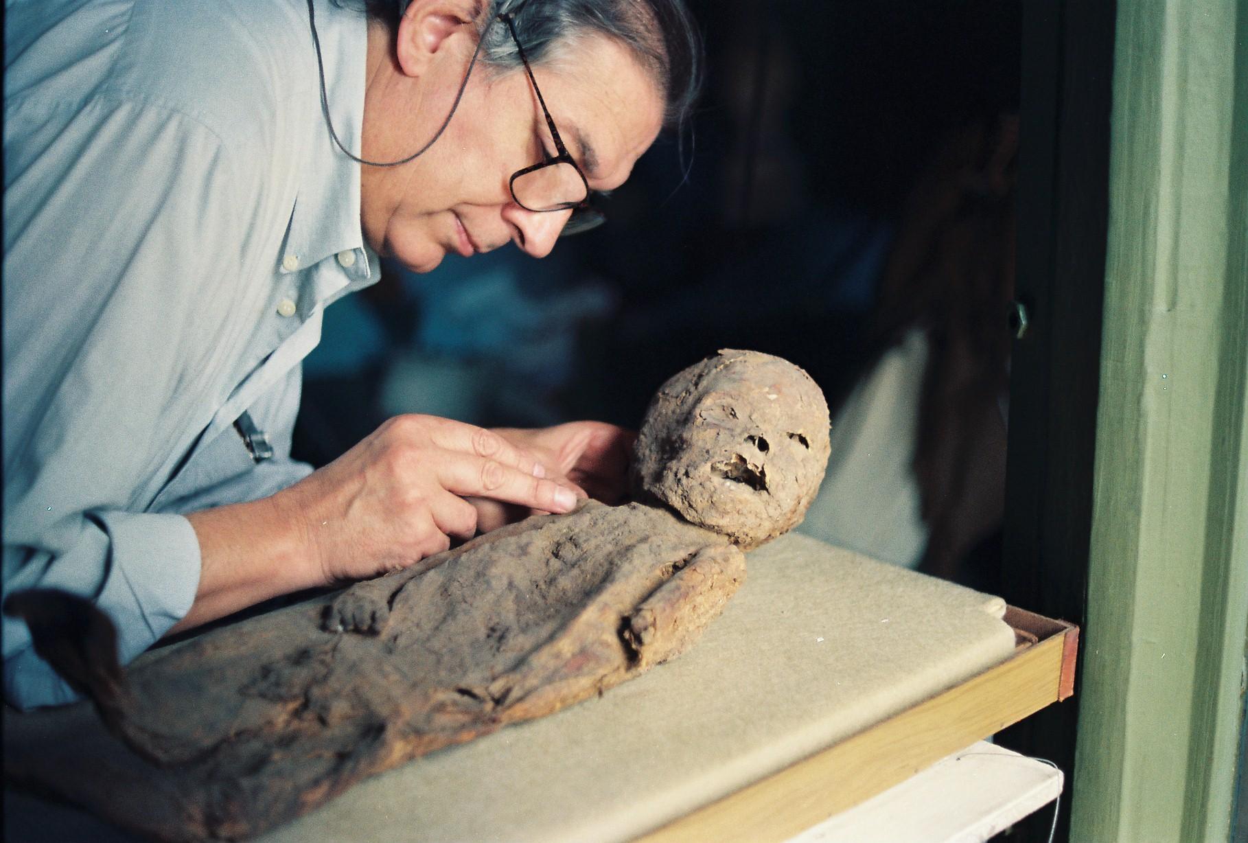 Momia Indígena Diaguita